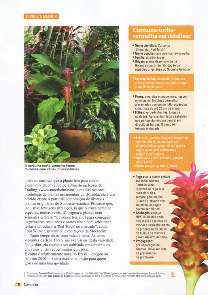 22-revista-natureza-ed-304-flavio-machado-arquitetura-paisagismo-3
