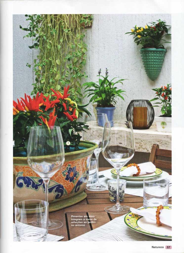 23-revista-natureza-ed-303-flavio-machado-arquitetura-plantas-enfeites-4